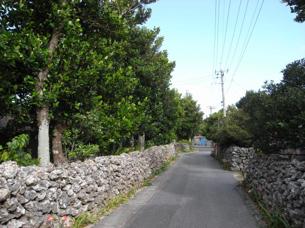 【10月】波照間島⇔石垣島フェリー・高速船 欠航率・運航記録